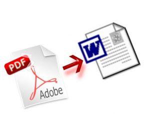 PDF в World